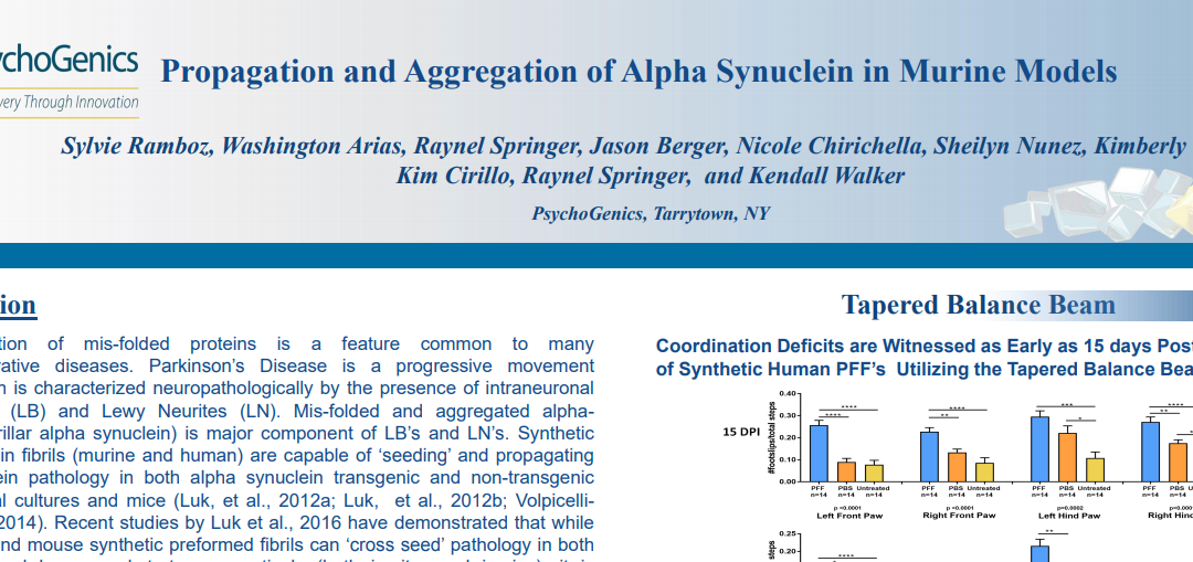Propagation and aggregation of alpha synuclein in murine models